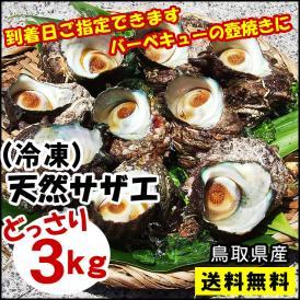 【冷凍】送料無料 天然サザエ鳥取県産[冷凍] 3kg(中小サイズ)【お刺身・壺焼きに♪】バーベキューに!