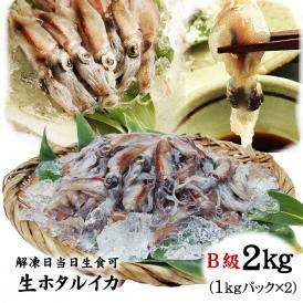【送料無料】生ホタルイカ2kg冷凍(2021年春獲れ新物)【B級】山陰沖産[冷凍](1kgパック×2パック)【解凍当日は生食可】