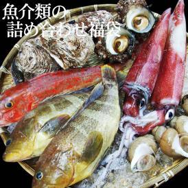 魚介類の詰め合わせ3980円セット福袋(魚介類2~4品程度入) 【送料無料】