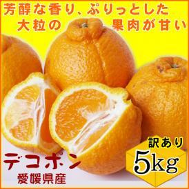 【訳ありデコポン】5kgセット送料無料!(大中小混合)〔自家用〕[常温]甘くて香り高い