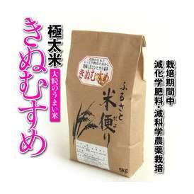 【28年度新米】【鳥取県産】極太米「きぬむすめ」10kg[送料無料][常温]
