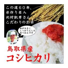 【30年産】【鳥取県産】極太米「コシヒカリ」(5kg)[送料無料][常温]