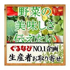 【八ヶ岳の安心野菜】無農薬無化学肥料栽培 野菜9品目詰め合わせ 送料無料(※一部地域を除く)