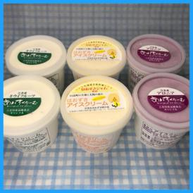 【期間限定】北海道産フルーツアイスクリーム 6個セット