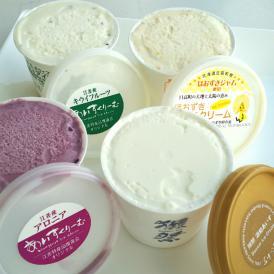 北海道産フルーツアイスクリーム & 獺祭あいす 8個セット