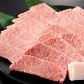 お得!!舌の上でトロけちゃう♪「阿波牛の藤原」のトロけるカルビ500g!!「牛トロ」! 焼肉用