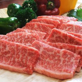 送料無料!「極み」とろける焼肉セット1kg(4~5人前)(梅)