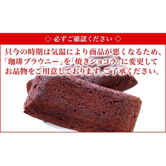 【送料無料】くれない~紅椿ブレンドと珈琲ブラウニーのセット03