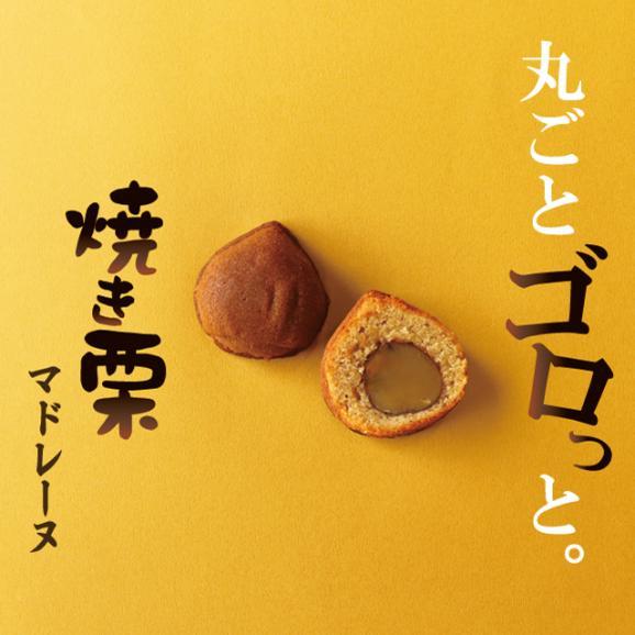 【数量限定】焼き栗マドレーヌの詰合せ 10個入り02