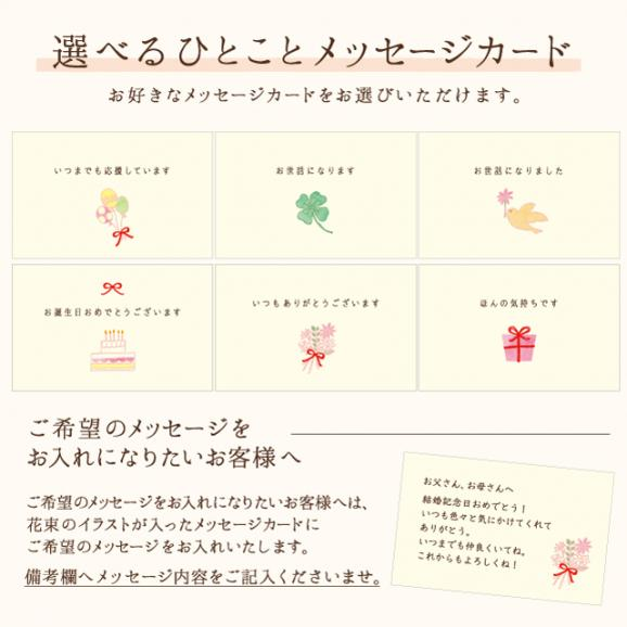 【限定数量】武蔵野食堂×墨花居 すごもりセット〈2名様用〉03
