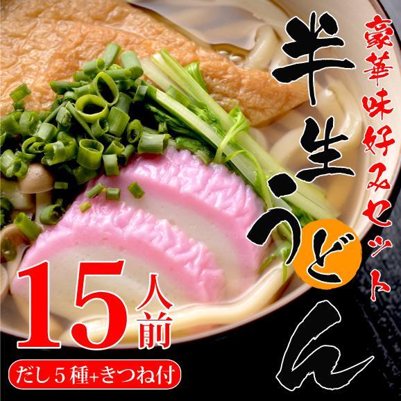 【送料無料】半生うどん15人前 豪華味好みセット01