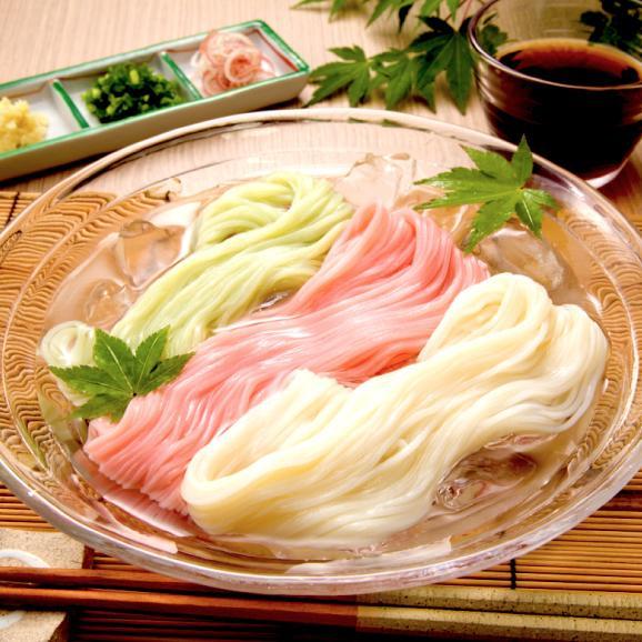 味と麺が選べる!讃岐満喫よくばりセット【送料無料1,000円】【生そうめん選択可】05