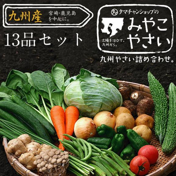 九州野菜13品ベストセレクション 【送料無料】01