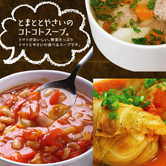 九州野菜ミニミニお試しセット 【送料無料】04