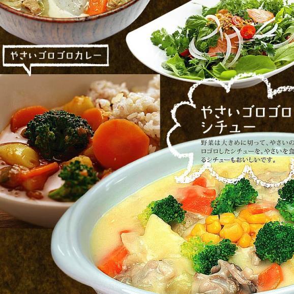 九州野菜ミニミニお試しセット 【送料無料】05
