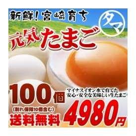 【送料無料】 宮崎 育ち のこだわり たまご !こだわりの飼料と マイナスイオン水 で育てた濃厚な味わい