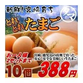 霧島山麓たまご 【九州 たまご】 1パック(10個)