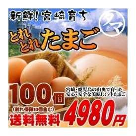 霧島山麓たまご 【九州 たまご】 10パック(100個) 【送料無料】