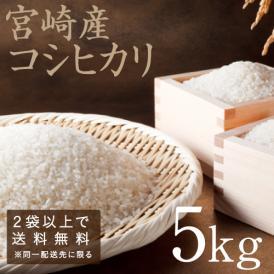 こしひかり 令和元年度産 新米! 宮崎産 5kg  精白米 2袋以上で送料無料