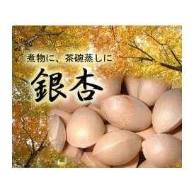 【大分産】銀杏 500g 大き目のぎんなんを冷凍して保存、使う分だけ冷凍庫からだしてお使いください。新鮮なぎんなんが食べられます。