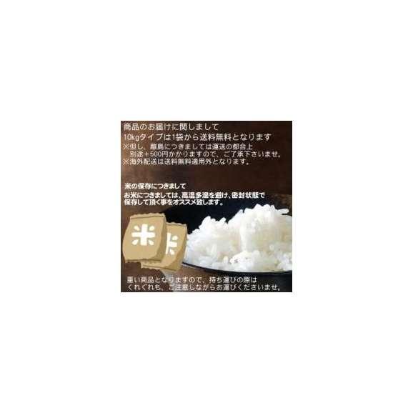 新米 27年度 宮崎産こしひかり 10kg 送料無料02