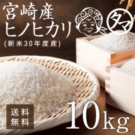新米 令和元年度 宮崎産こしひかり 10kg 精白米 送料無料