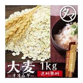 九州産大麦 【送料無料】 1000g 食べる食物繊維の宝庫な食材