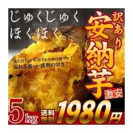 訳あり 安納芋 食べ放題 【送料無料】 激安1980円 鹿児島産 5kg♪