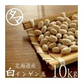 10kg 北海道産 白いんげん豆(大手亡豆)(30年度産) 送料無料