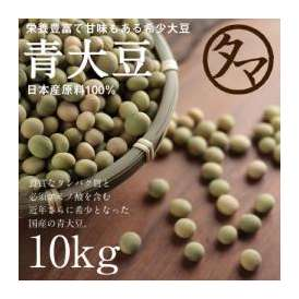 青大豆 10kg 送料無料  国産(宮崎産) 令和元年度産
