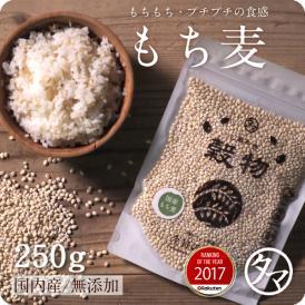 九州産もち麦 【送料無料】 250g もっちりプチプチとした食感と食物繊維が豊富な食材