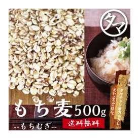 九州産もち麦 【送料無料】 500g(250g×2袋) もっちりプチプチとした食感と食物繊維が豊富な食材