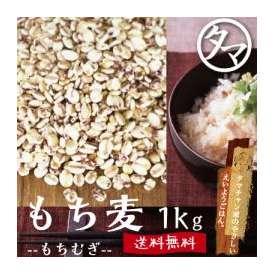 九州産もち麦 【送料無料】 1000g もっちりプチプチとした食感と食物繊維が豊富な食材