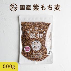 超レア食材!九州産紫もち麦 【送料無料】 500g(250g×2袋) 食物繊維&ポリフェノールも一緒に食べよう