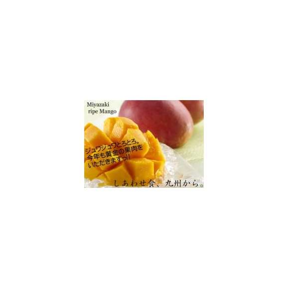 【送料無料】太陽のタマゴ(2.5kg詰め)【宮崎マンゴー】【太陽のたまご】【ギフト対応熨斗・包装無料】【お中元ギフト】02