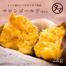栗黄金 【送料無料】 2000g 鹿児島産