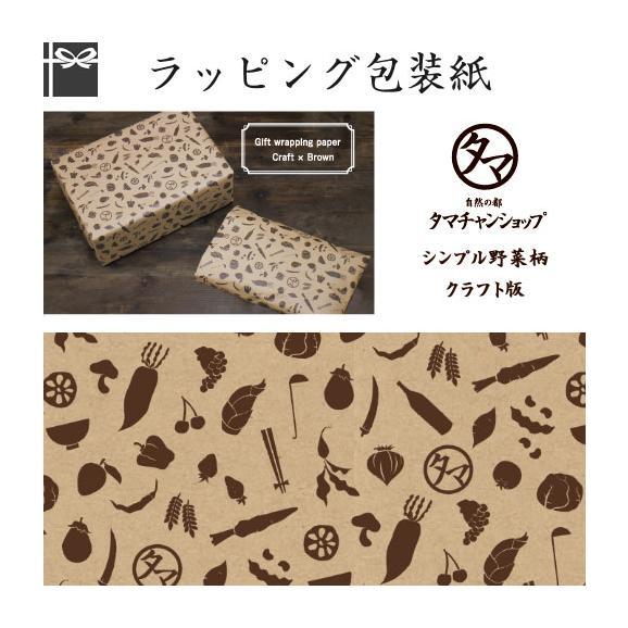 ■ラッピング希望■タマチャン野菜柄タイプ (クラフト×茶) (ギフト/ラッピング/包装紙)01