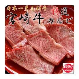 【人気送料無料】日本一『宮崎牛』霜降り特選上カルビ 500g宮崎牛カルビの中でも厳選された極上の部位のみをお届けします!