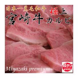 【送料無料】日本一宮崎牛の最高級極上カルビ 600g(6〜8人前)