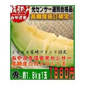 宮崎産温室白肉メロン1玉【ギフト対応】【熨斗可能】