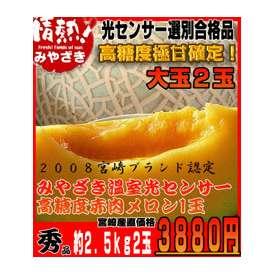 宮崎産温室赤肉メロン2玉【ギフト対応】【熨斗可能】