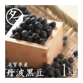 【送料無料】丹波黒大豆大粒2Lサイズ=1000g