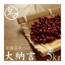 北海道 大納言 小豆 5000g 令和元年度産 送料無料