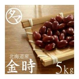 北海道産『金時豆』北海道で育った綺麗な大正金時 5000g 令和2年度産