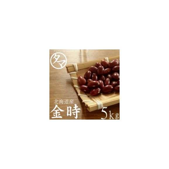 北海道産『金時豆』北海道で育った綺麗な大正金時 5000g 令和元年度産01