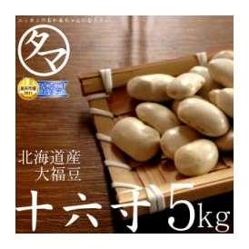 北海道産A級品『十六寸・大福豆』北海道で育った綺麗な白い豆 5000g