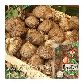 こころ温まる椎茸ギフト 椎茸市場だからこそ出来る高品質&低価格 九州産乾し小粒どんこ110g 2年の歳月をかけた本物の味をお届け致します!
