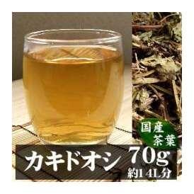 国産カキドオシ[別名 カントリソウ]70gヨーロッパ、日本に愛される花♪