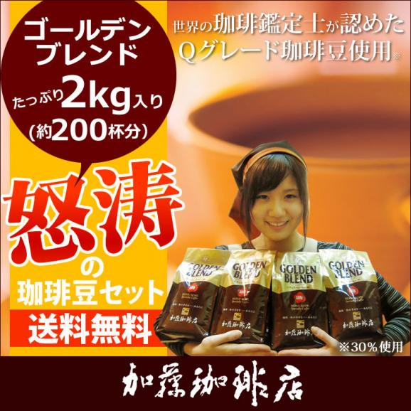 2kg入・怒涛の珈琲豆セット[G500×4]/グルメコーヒー豆専門加藤珈琲店/珈琲豆01