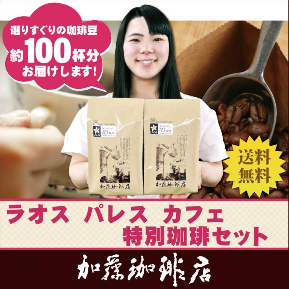 [1kg]ラオス・パレスカフェ特別珈琲セット(ラオス×2)/珈琲豆01